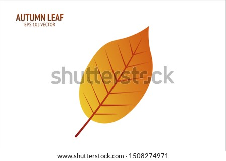 Autumn leaf. Autumn leaf on white background. Autumn isolated leaf vector icon. Leaf autumn colorful illustration for banner, flyer, textile, print, surface, fabric design