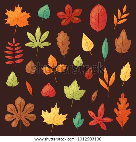 autumn leaf vector autumnal