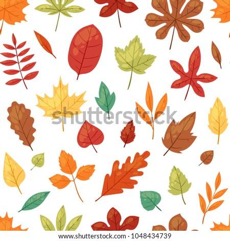 autumn leaf vector autumnal