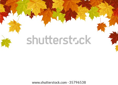 Autumn leafs - stock vector