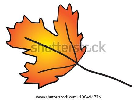 autumn leave illustration