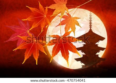 autumn leaves autumn landscape
