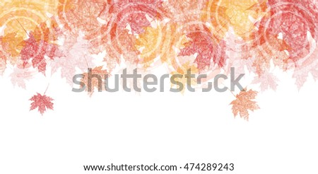 autumn leaves autumn landscape