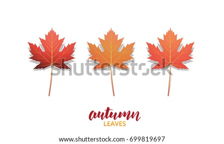 Autumn leaves. Fall leaves for seasonal  banners, ads, marketing etc. Autumn leaves vector set