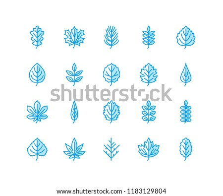 89 Birch Leaf Template Seamless
