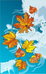 Autumn leaves floating in a puddle. Reflection of a blue sky with clouds. Card with colorful autumn elements. Vector illustration. Autumn banner background