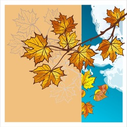 Autumn leaves floating in a puddle. Reflection of a blue sky with clouds. Square banner with colorful autumn elements. Vector illustration. Autumn banner background