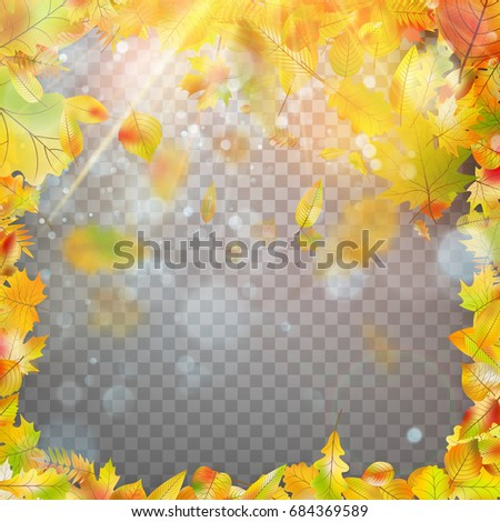 autumn leaves frame and bokeh
