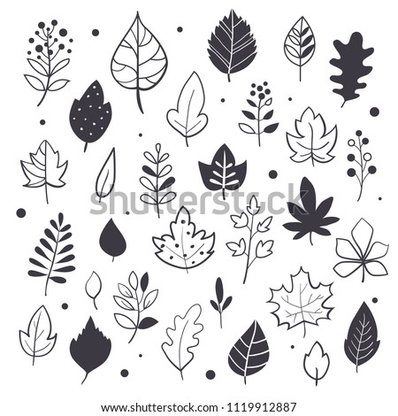 Autumn leaves, hand drawn style, black and white graphic set, vector illustration