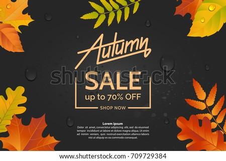 autumn leaves on a dark wet