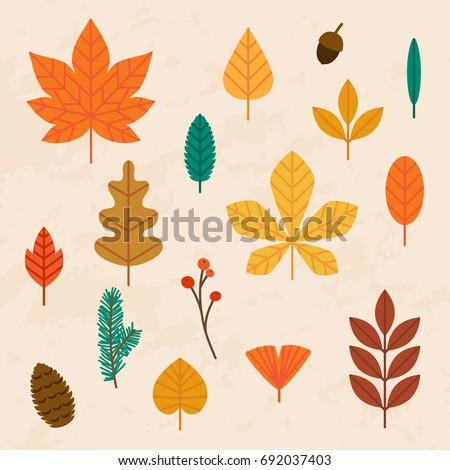 autumn leaves set. flat design...