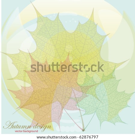 Autumn leaves. Vector background EPS 10