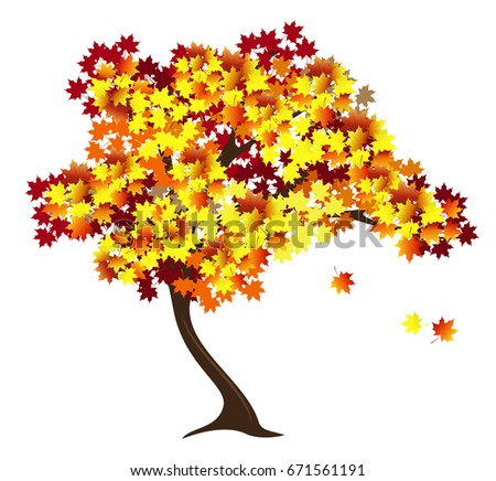 autumn maple tree with red and