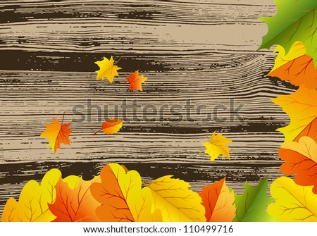 Autumn maples falling leaves background. Vector illustration.
