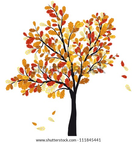Autumn Oak Tree With Falling Leaves on White Background. Elegant Design with Text Space and Ideal Balanced Colors. Vector Illustration.