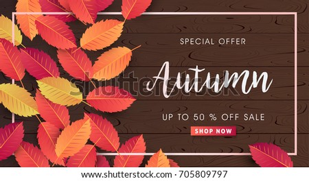 Autumn sale background layout decorate with leaves for shopping sale or promo poster and frame leaflet or web banner.Vector illustration template. #705809797