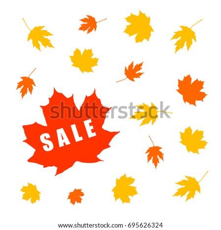 Autumn sale banner with maple leaf. Defoliation. Vector illustration on white background.