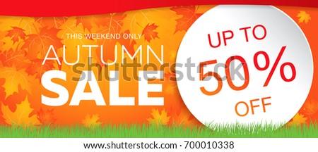 autumn sale template banner, vector illustration
