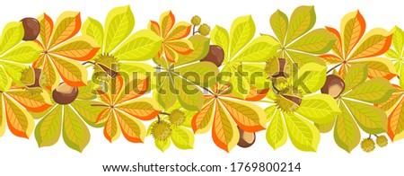 Coloring Book Horse Chestnut Leaf Stock Illustration - Download Image Now -  iStock