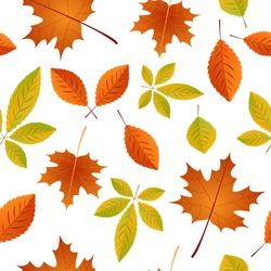 Autumn Seamless pattern with autumn maple leaves. Vector illustration