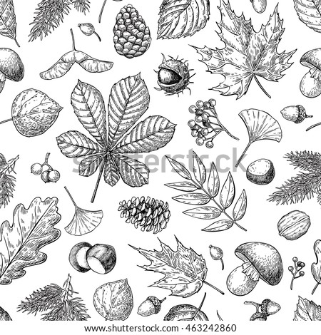 autumn seamless vector pattern