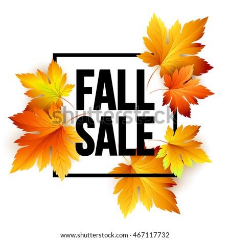 Autumn seasonal sale banner design. Fall leaf. Vector illustration EPS10