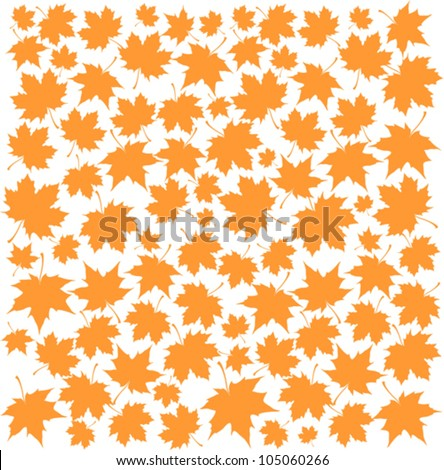 Autumn Set of Orange Maple Leaves on White Background, Vector Version