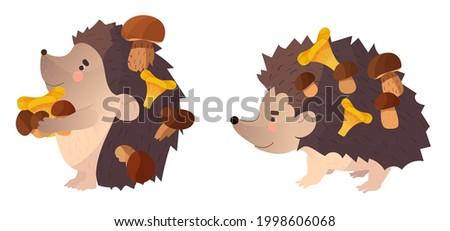 autumn set two hedgehog