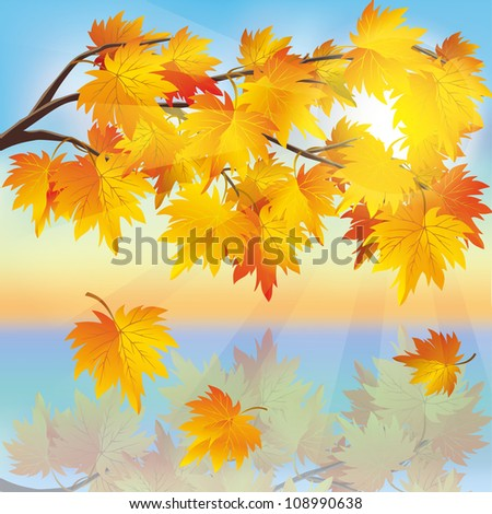 Autumn tree maple with flying leaves on background of sunset, beautiful nature landscape, vector illustration.