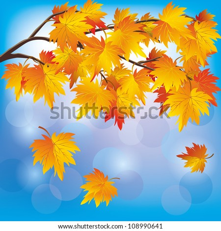 Autumn tree maple with flying leaves on blue background, beautiful nature landscape. Vector illustration.