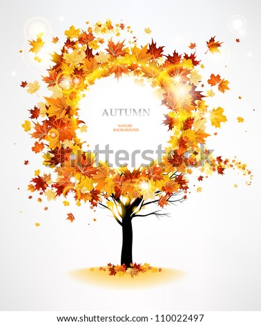 autumn tree with beautiful