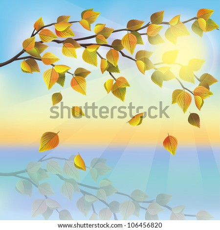 Autumn tree with flying leaves on background of sunset, beautiful nature landscape, vector illustration. Place for text