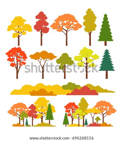 autumn trees and bushes forest