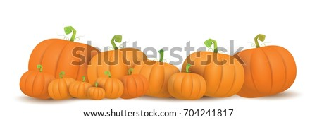 autumn vector orange pumpkins