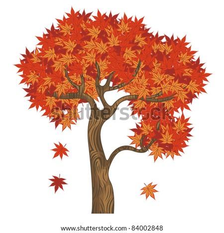 autumn vector tree maple