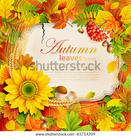 Autumn vintage greeting card on colorful leaves background with place for text. Vector illustration. Check my portfolio for raster version.