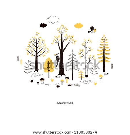 autumn woodland landscape
