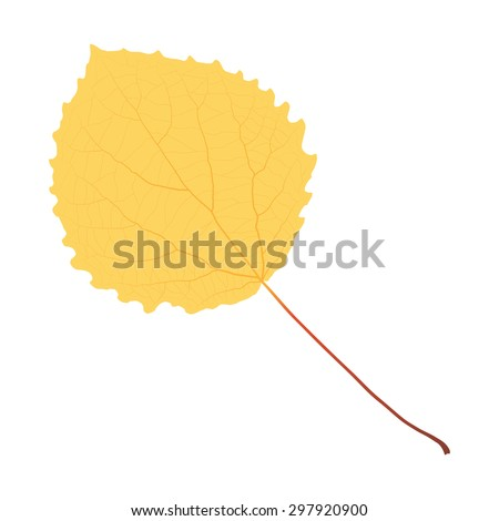 autumn yellow leaf aspen