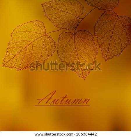 autumnal background with your
