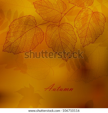 Autumnal background with your text (vector eps 10)