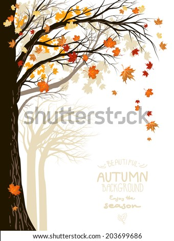 autumnal forest with falling