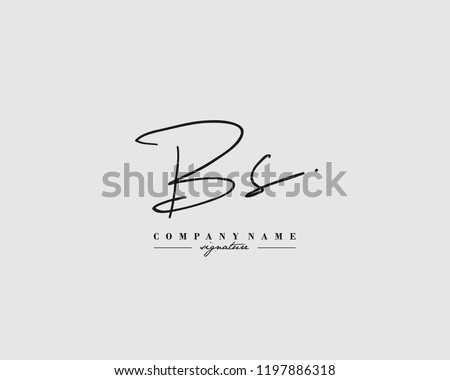 B S BS Signature initial logo template vector