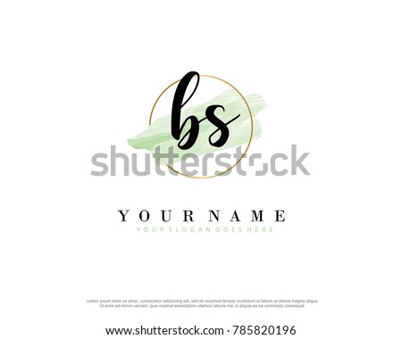 B S Initial water color logo template vector