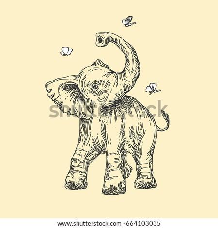 baby animals. wild. elephant...