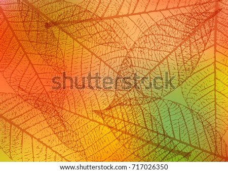 backdrop with skeleton leaves