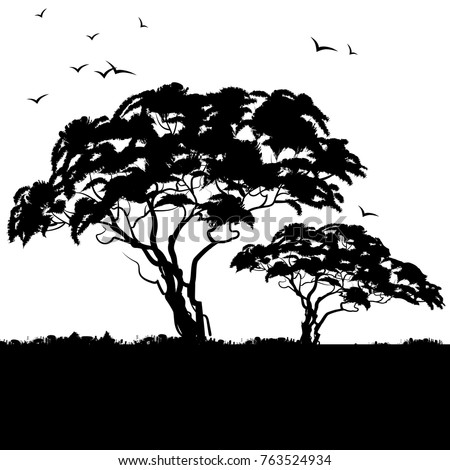 Background african landscape. Black silhouette of african trees. Vector illustration.
