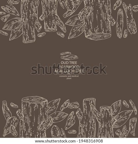 Background agar wood: oud tree, leaves and pice of agar wood. Agalloch tree. Perfumery, cosmetics and medical plant. Vector hand drawn illustration Stock fotó ©