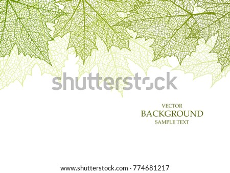 Background and leaves for decoration and design
