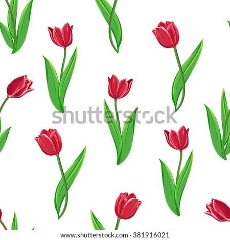 background flowers tulip