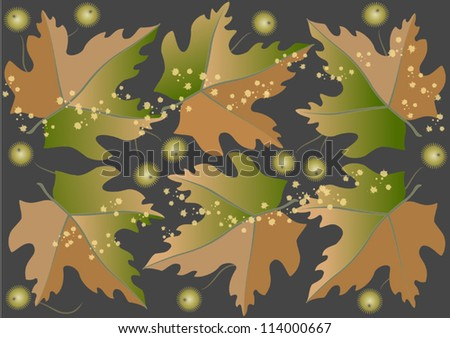 Background from autumn leaves and round fruits.